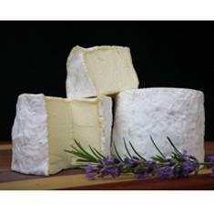 Champlain Valley Creamery Cham cheese